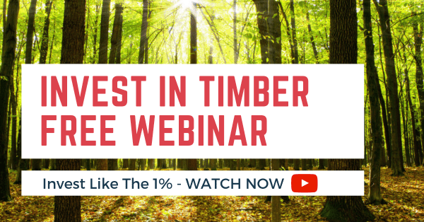How to invest in timber